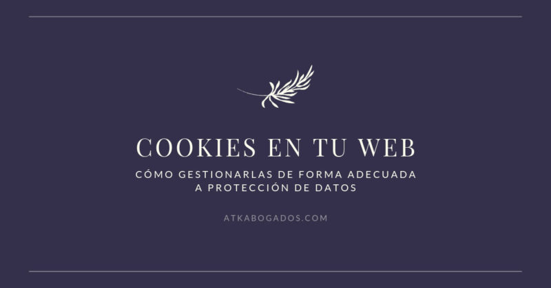 cookies en la web